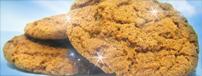 gingernutcookie